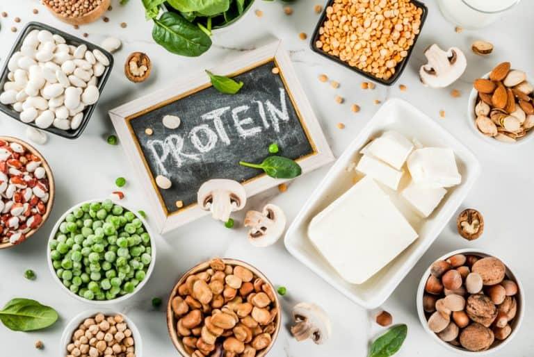 Las 10 mejores fuentes de proteína vegetal