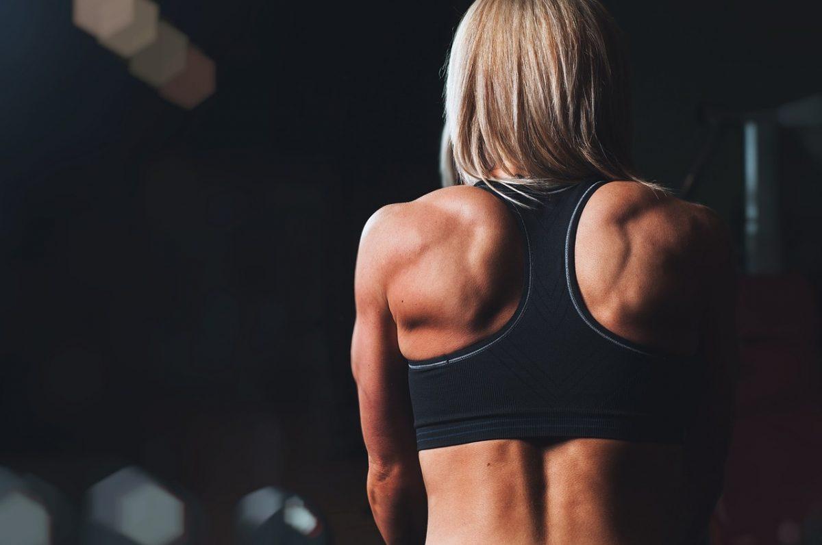 Mejores ejercicios para Espalda, utilizando elásticos